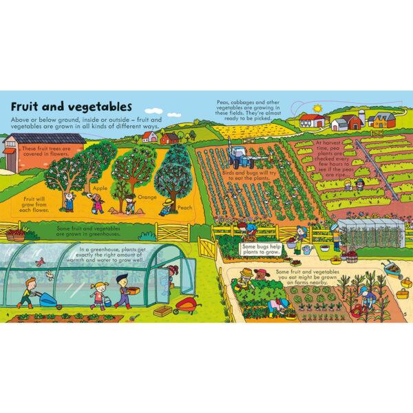 Carte pentru copii - Look Inside Food - Usborne