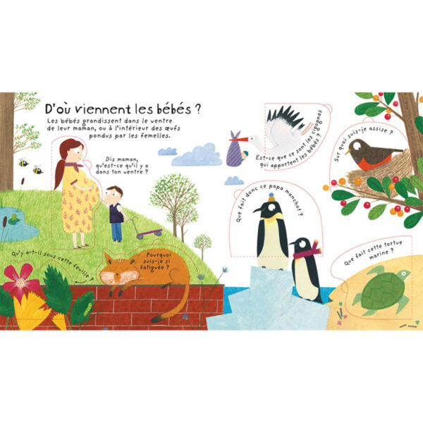 Carte pentru copii - Lift-the-Flap First Questions and Answers Where do babies come from - Usborne