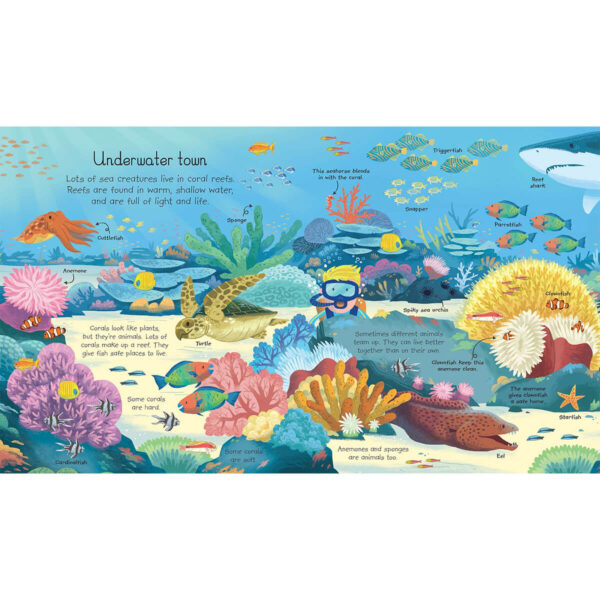 Carte pentru copii - My Very First Animals Book - Usborne