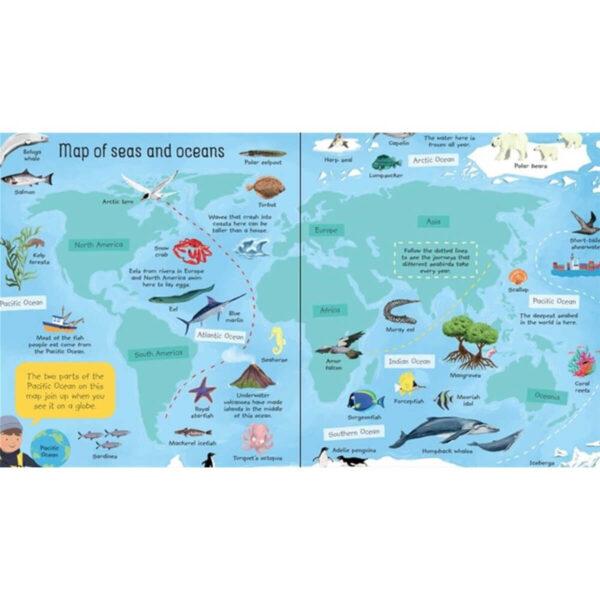 Carte pentru copii - My First Seas and Oceans Book - Usborne