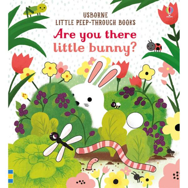 Carte pentru copii - Are you there little Bunny - Usborne