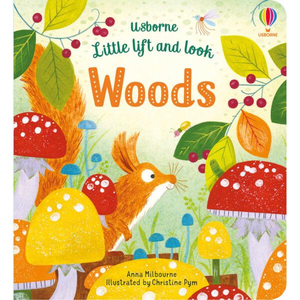 Carte pentru copii - Little Lift and Look Under the Sea - Usborne