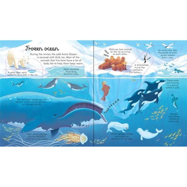 Carte pentru copii - Look Inside Seas and Oceans - Usborne