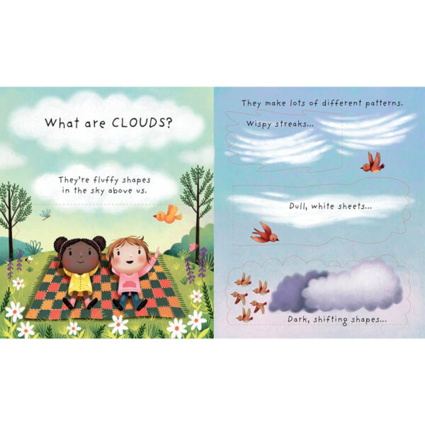 Carte pentru copii - Lift-the-flap Very First Questions and Answers: What are clouds? - Usborne